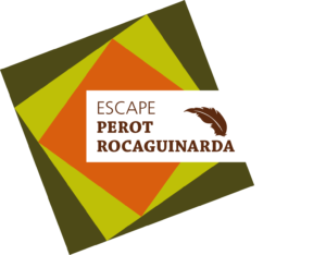 Escape Room Perot Rocaguinarda